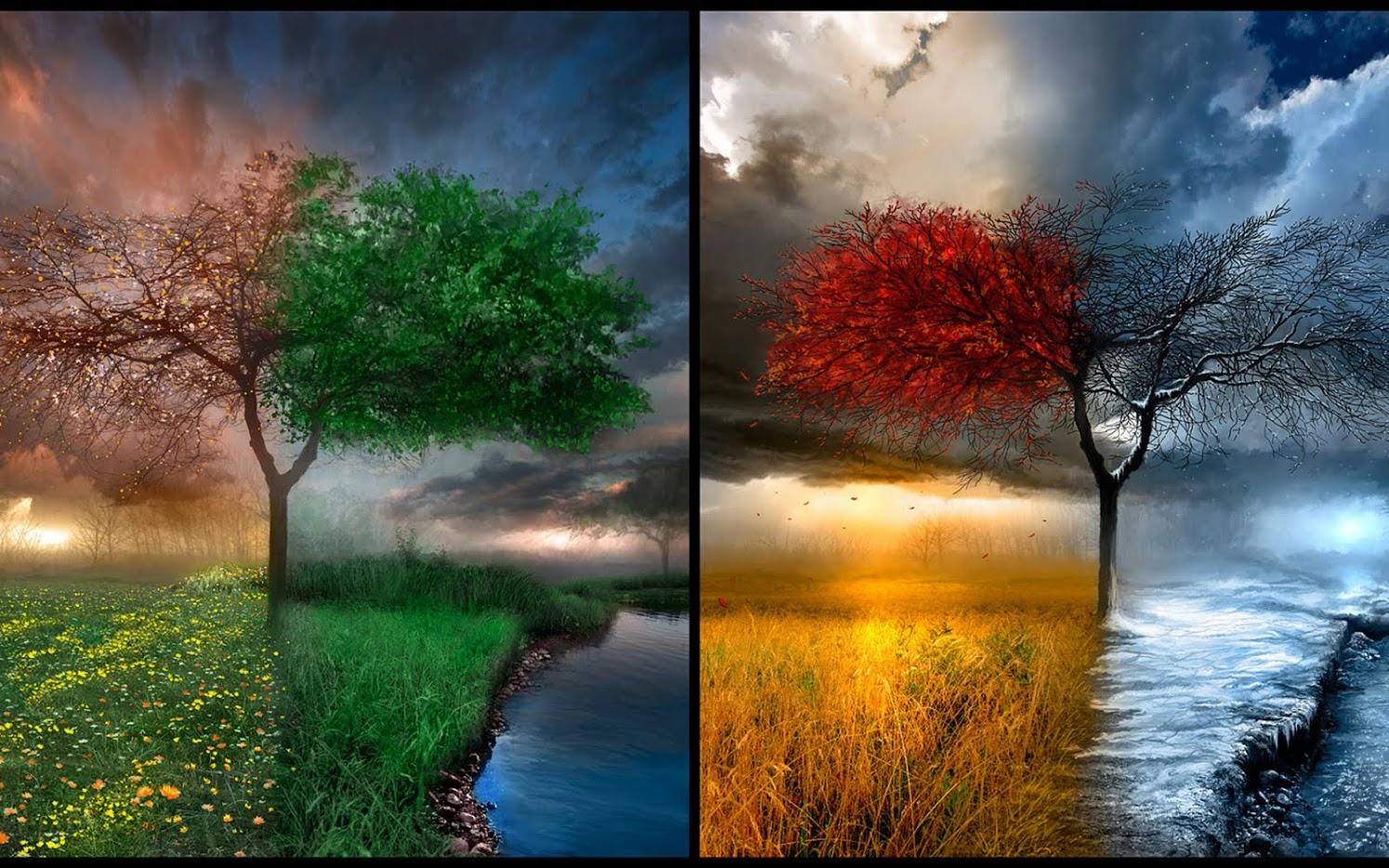 4-seasons - 4-seasons – 4Season's Landscaping