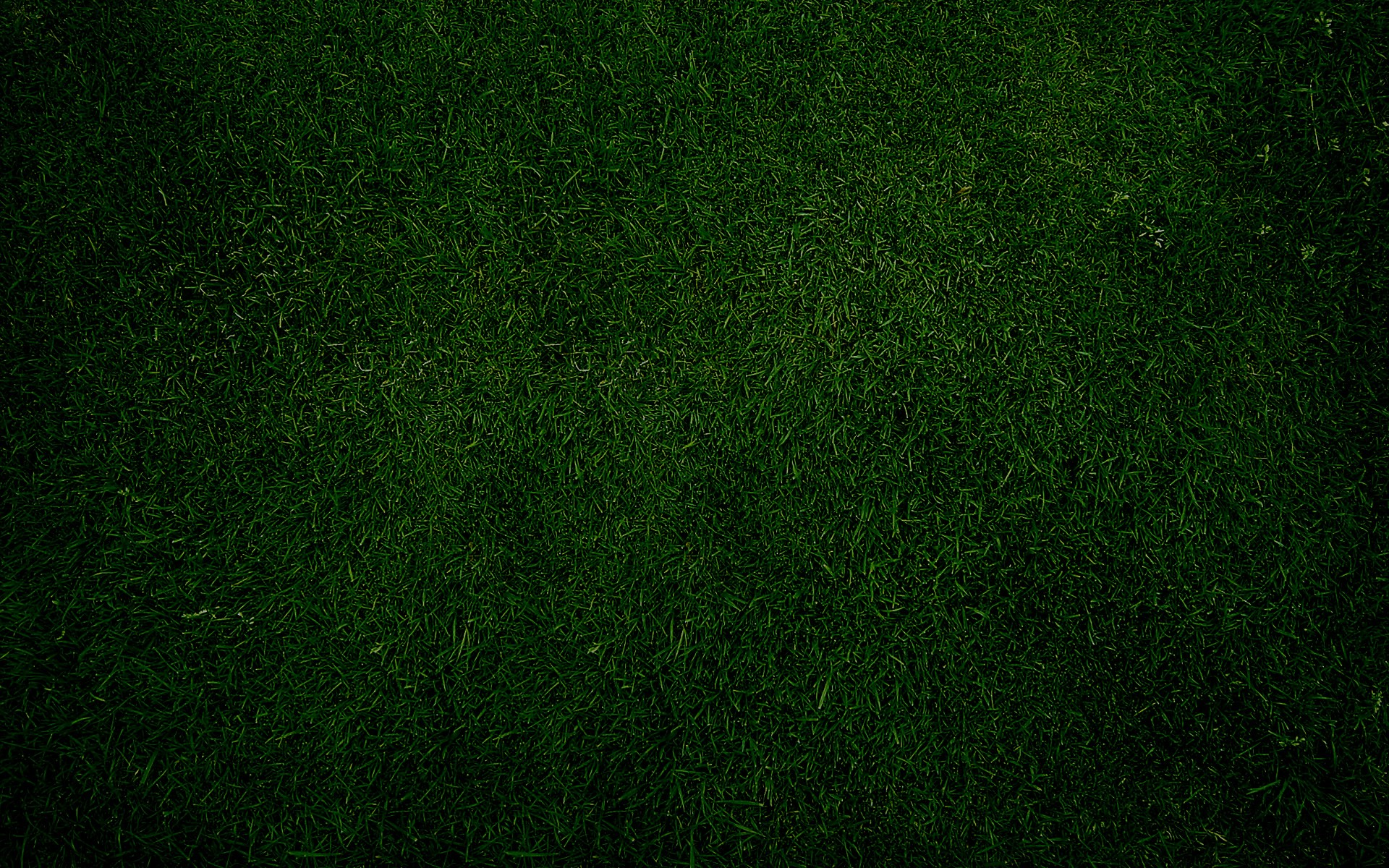 How To Quote A Website >> Plain-Green-Grass-background – 4Season's Landscaping