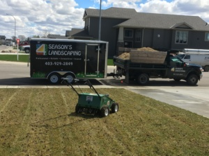 Best Lawn Aeration in Lethbridge 1