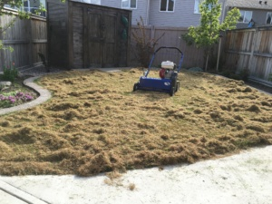 Best Lawn Power Raking in Lethbridge 1